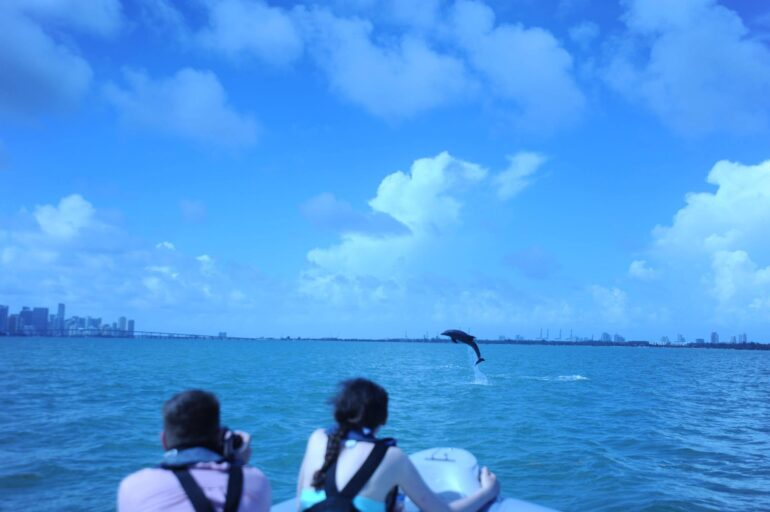 Dolphin encounter during boat tour in Miami with Ocean Force Adventures.